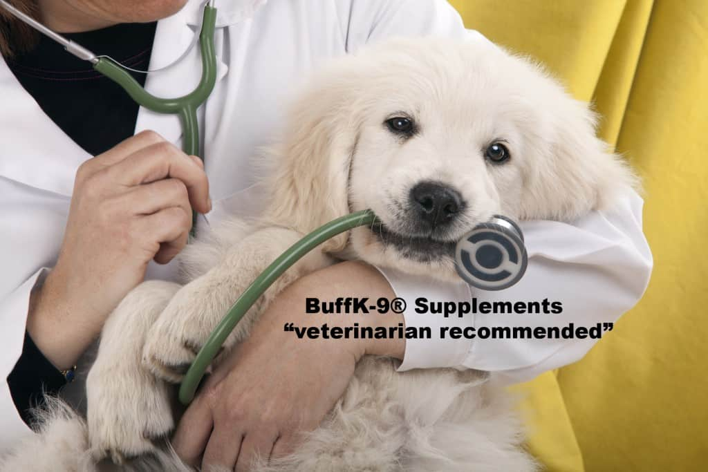 buff-k9-veterinarian-recommended-dog supplements best dog food